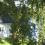 220fb6e98d-villa_tree